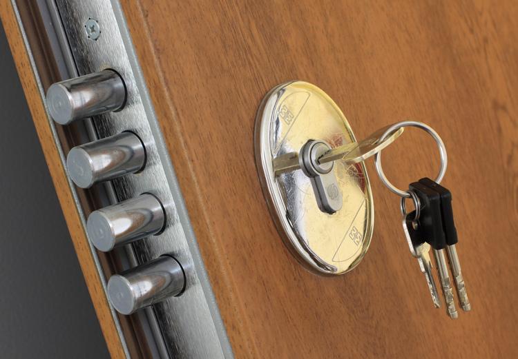 saugios sarvuotos durys